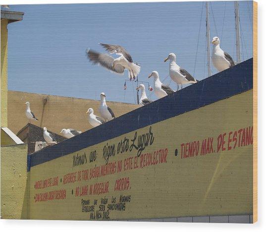 Ensenada Harbour And Fishmarket 40 Wood Print