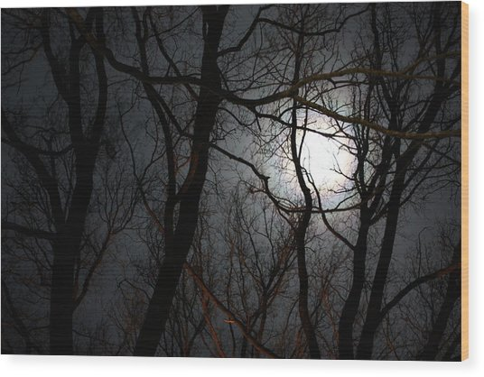 Entangled In The Moonlight Wood Print by Judy Powell