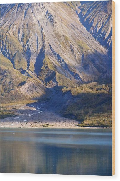 Entering Glacier Bay Alaska Wood Print