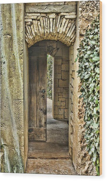 Entrancing Entrance Wood Print by Delilah Downs