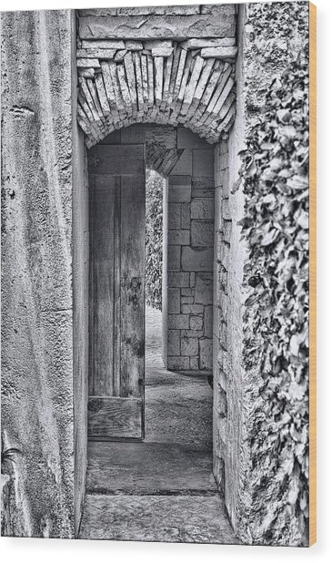 Entrancing Entrance In Monochrome Wood Print by Delilah Downs