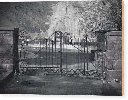 Entry To Salem Willows Wood Print