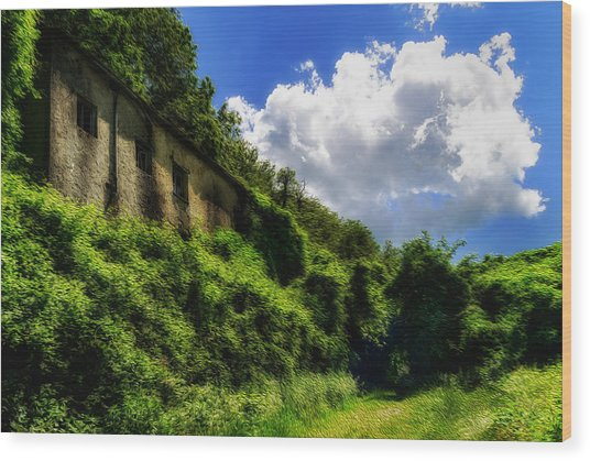 Enveloping Vegetation On Abandoned Houses - Vegetazione Avviluppante Sulle Case Abbandonate Wood Print