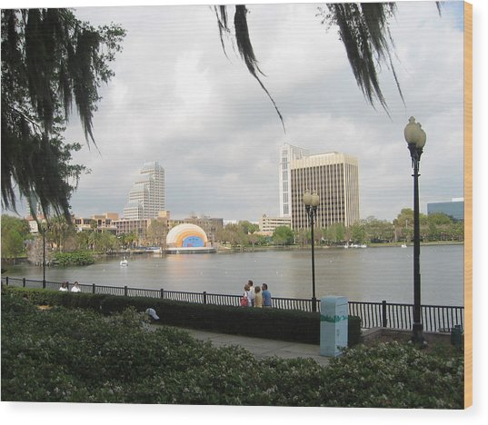Eola Park In Orlando Wood Print