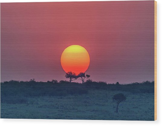 Equatorial Sunset Wood Print by Jeffrey C. Sink