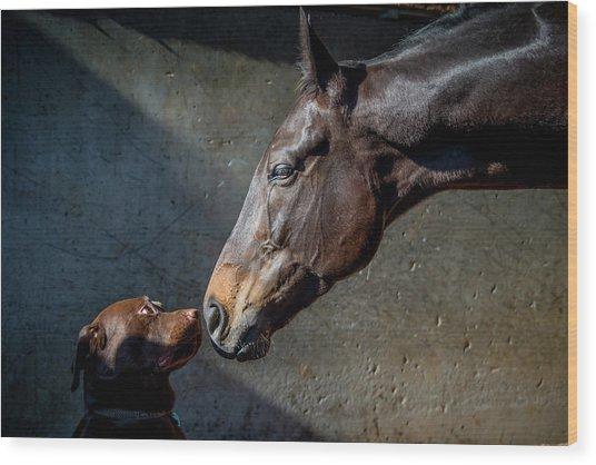 Equine Meets Canine Wood Print by Sharon Lee Chapman