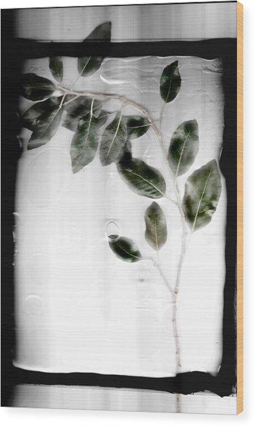 Erase Wood Print
