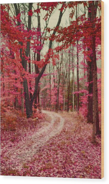 Ethereal Forest Path With Red Fall Colors Wood Print
