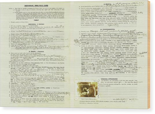 Eugenics Data Collection Wood Print