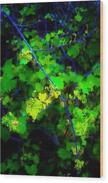 Euphoric Vine Wood Print