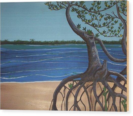 Evans Landing Mangroves Wood Print