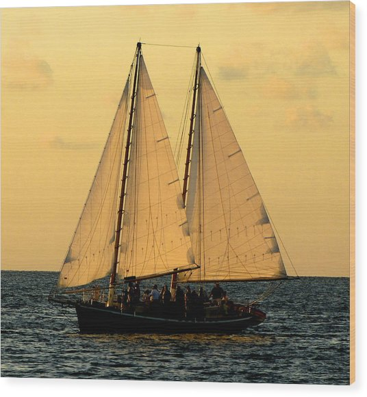 More Sails In Key West Wood Print