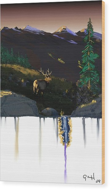 Evening Elk Wood Print