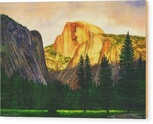 Evening Glow In Yosemite Wood Print