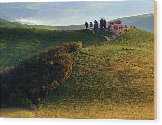 Evening Hills Wood Print by Izidor Gasperlin