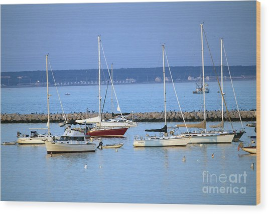 Evening I The Harbor Wood Print