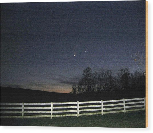 Evening In Horse Country Wood Print