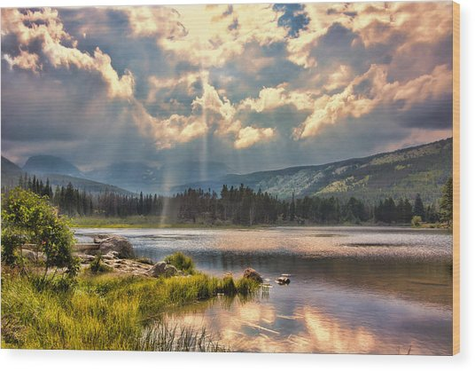 Evening In The Rocky Mountain National Park Wood Print