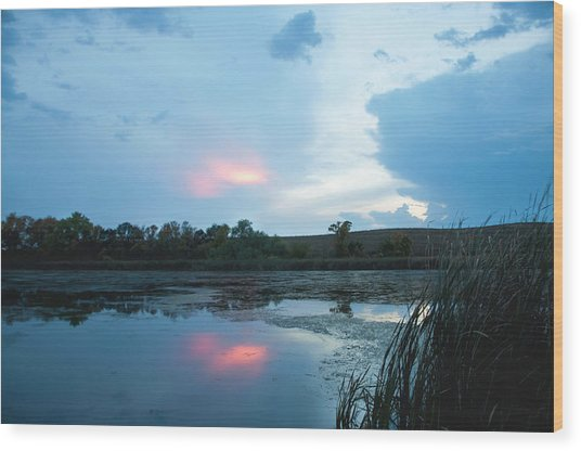 Evening Reflections On The Pond Wood Print