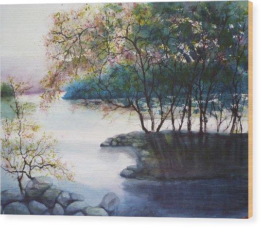Evening Shadows Wood Print by Judy Meng