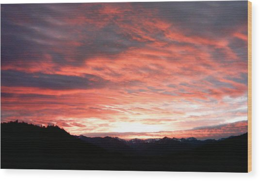 Evening Splendor  Wood Print by William McCoy
