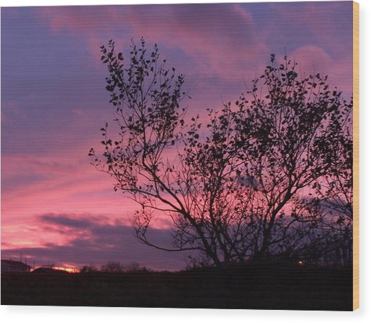 Evening Sunset Wood Print