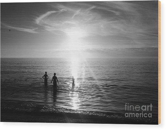 Evening Swim Wood Print