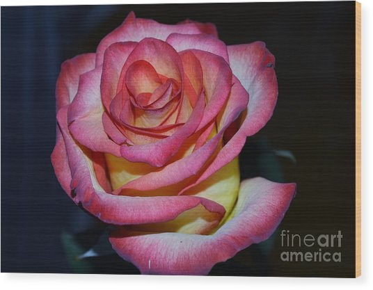 Event Rose Too Wood Print