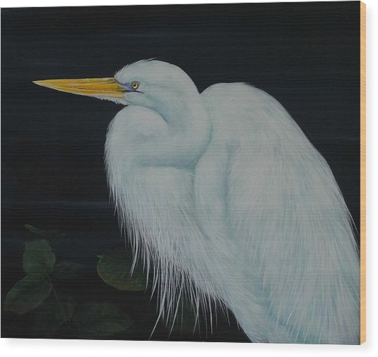 Everglades Angel Wood Print