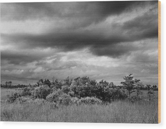 Everglades Storm Bw Wood Print