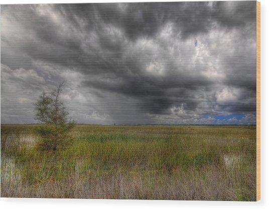 Everglades Storm Wood Print