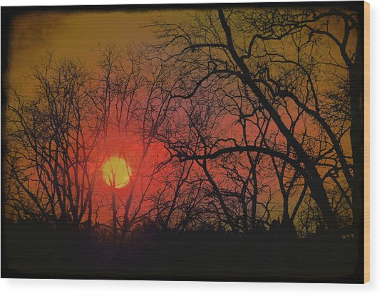 Every Night I Can Hear The Promise Of A Gentle Awakening Wood Print by Jan Amiss Photography