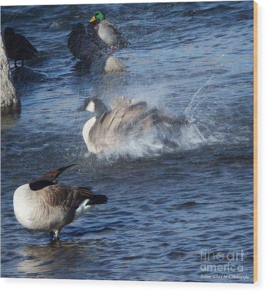 Everyone Duck Wood Print