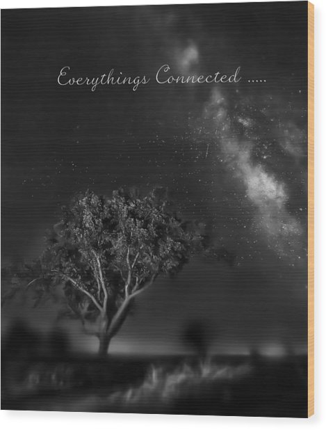 Everythings Connected Wood Print