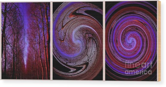 Evolution De La Foret En Spirale Wood Print