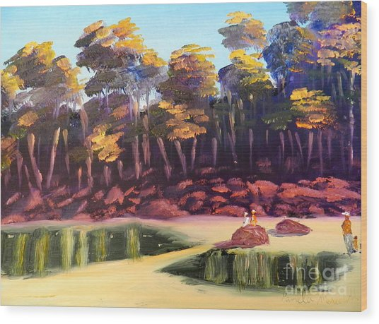 Exploring On Echo Beach Wood Print