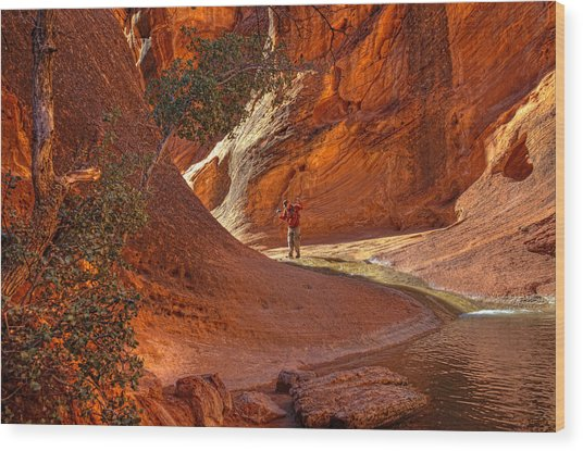 Exploring The Canyon Wood Print
