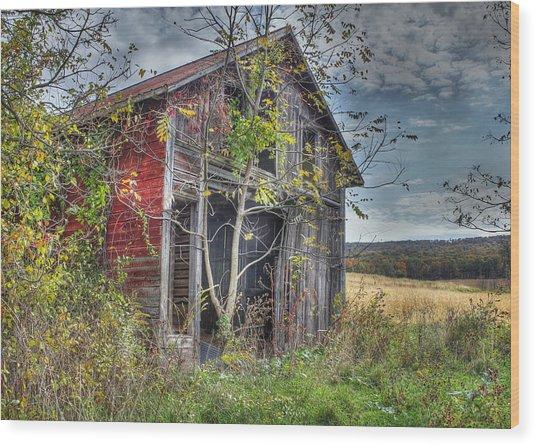 Extra Storage Wood Print by Sharon Batdorf