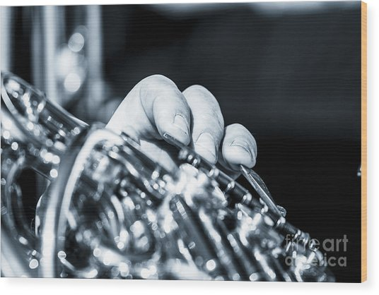 Extreme Close Up Of Fingering Of French Horn Wood Print