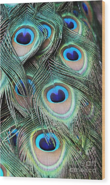 Eye Of The Peacock #2 Wood Print
