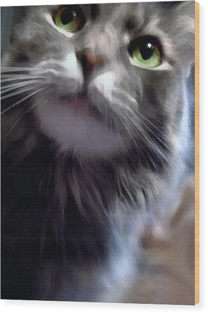 Eyes Nose Mouth Whiskers Wood Print