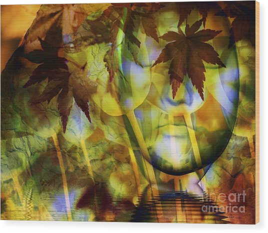Face In The Rock Dreams Of Tulips Wood Print