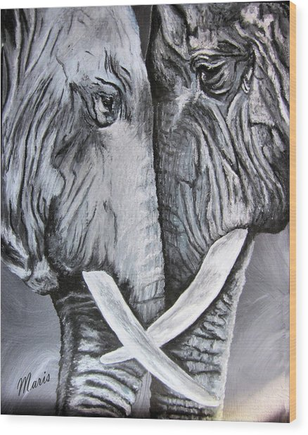 Face To Face Wood Print by Maris Sherwood