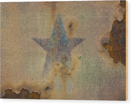 Faded Glory Wood Print