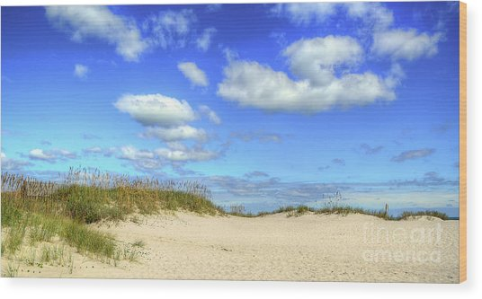 Fair Weather Along The Beach Wood Print
