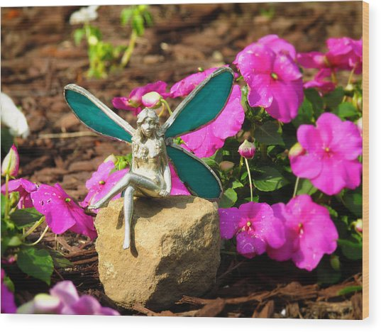 Fairy Garden Wood Print by Andrea Dale