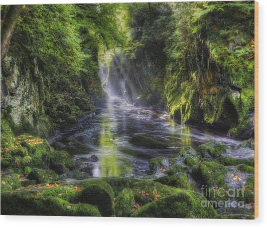 Fairy Glen Wood Print