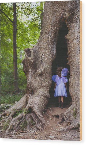 Fairy House Wood Print by Vanessa Lassin Photography