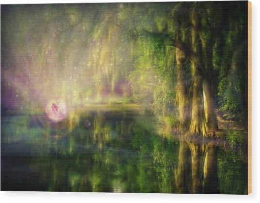 Fairy In Pink Bubble In Serenity Forest Wood Print