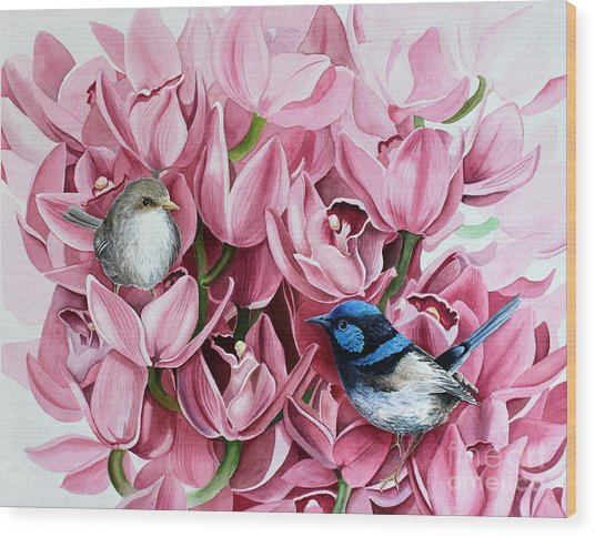 Fairy Wrens And Orchids Wood Print